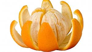 Parazit düşmanı portakal kabuğu
