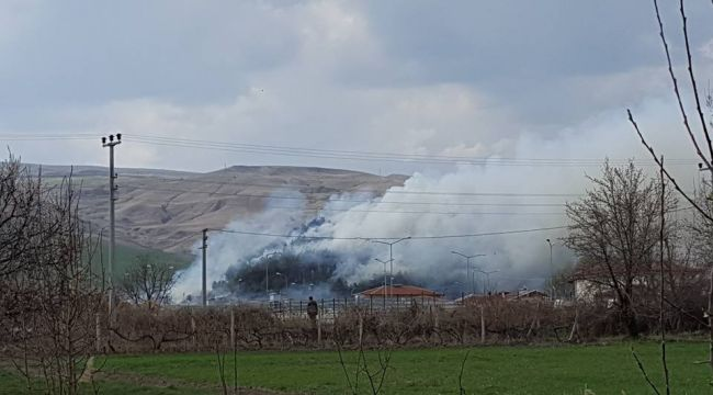 Orman haftasında Atatürk Orman Çiftliği yandı