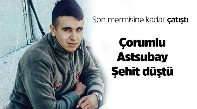 Çorumlu Mustafa Bingöl'de şehit oldu
