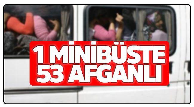 İskilip'te 53 Afganlı yakalandı