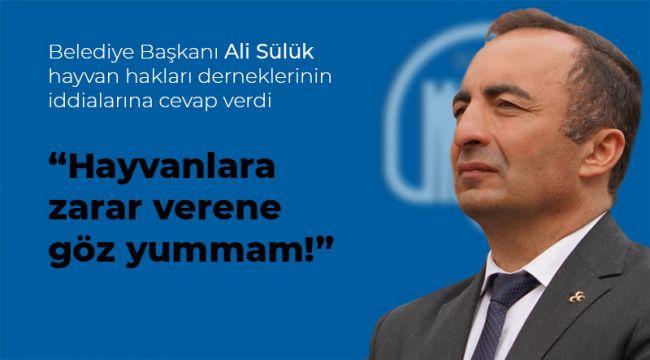 Ali Sülük