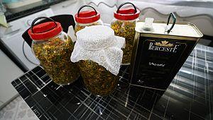 Sarı kantaron yağı yapımı