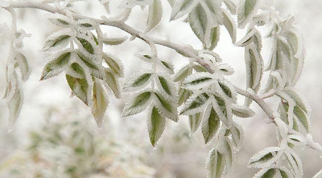 21 Ocak'a kadar buzlanma ve don uyarısı